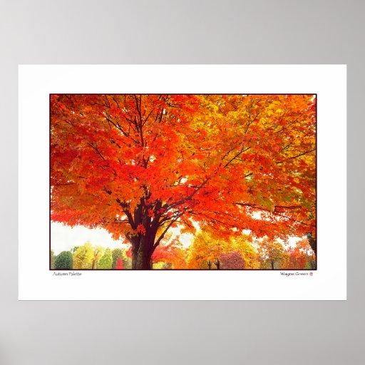Paleta del otoño - Ohio Poster