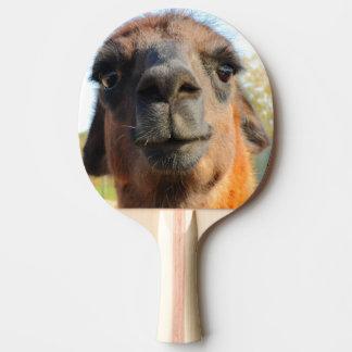 Paleta del ping-pong de la alpaca pala de ping pong