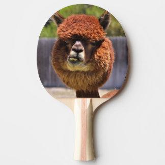 Paleta divertida del ping-pong de la alpaca pala de tenis de mesa