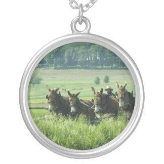 Paleta traída por caballo de Amish Colgante Redondo