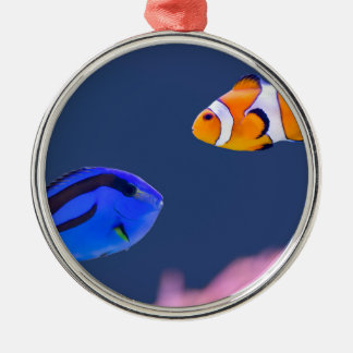 Palette surgeonfish and clown fish swimming metal ornament