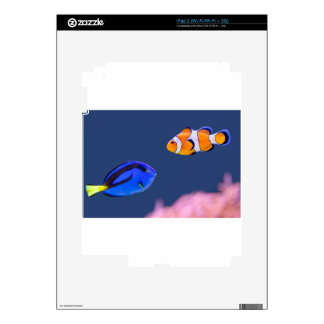 Palette surgeonfish and clown fish swimming skins for the iPad 2