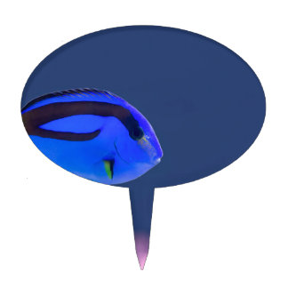 Palette surgeonfish swimming in blue water cake topper