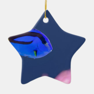 Palette surgeonfish swimming in blue water ceramic ornament