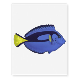 Palette surgeonfish temporary tattoo