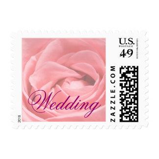 Palidezca - color de rosa rosado, casandose timbres postales