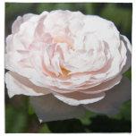 Palidezca - color de rosa rosado servilleta de papel