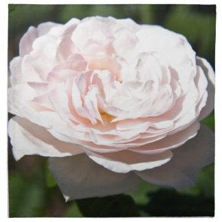 Palidezca - color de rosa rosado servilleta imprimida