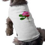 Palidezca - el capullo de rosa rosado ropa de perros