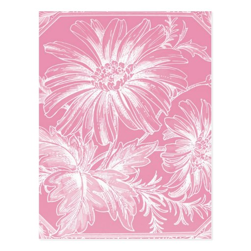 Palidezca - el diseño gráfico de la flor rosada tarjetas postales