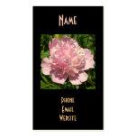 Palidezca - el Peony rosado Tarjetas De Visita