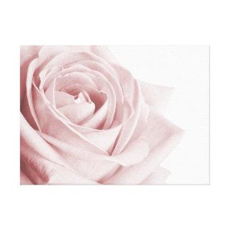 Palidezca - la flor color de rosa rosada en lona impresión en tela
