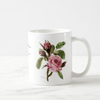 Palidezca - la taza subió musgo rosado