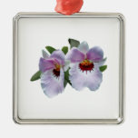 Palidezca - las orquídeas rosadas ornamentos de reyes
