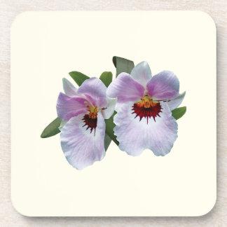 Palidezca - las orquídeas rosadas posavasos de bebida