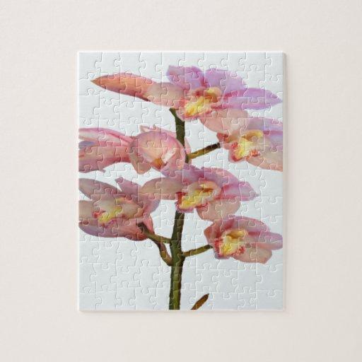 Palidezca - las orquídeas rosadas puzzle