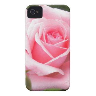 Pálido - caja color de rosa rosada del iPhone 4 Case-Mate iPhone 4 Funda