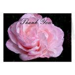 Pálido - el rosa rosado le agradece tarjeta de not