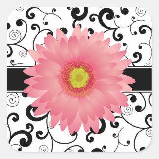 Pálido - sello rosado del diseño de la voluta del pegatina cuadrada