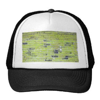 Pálido - textura verde de la pared de ladrillo del gorras