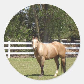 Palillos del caballo pegatina redonda