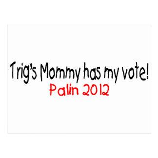 Palin-Trig's Mom Has My Vote Postcard