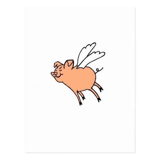 Palingates flying pig postcard
