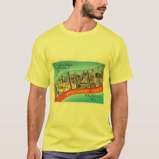 Palisades New Jersey NJ Vintage Travel Postcard- T-Shirt
