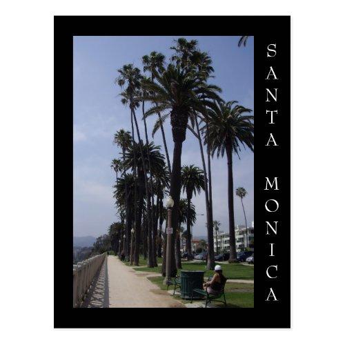 Palisades Park Santa Monica California Postcard