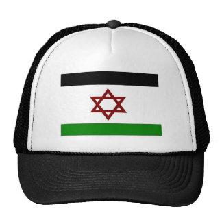 PALISRA Flag Mesh Hats