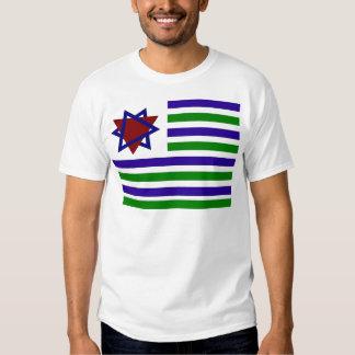 PALISRA Flag T-shirt