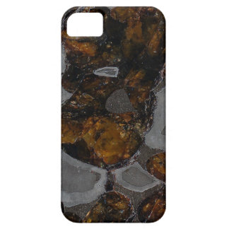 Pallasite iPhone 5 Case-Mate Funda