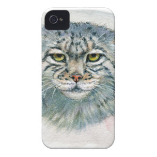 Pallas's Cat 862 iPhone 4 Cover