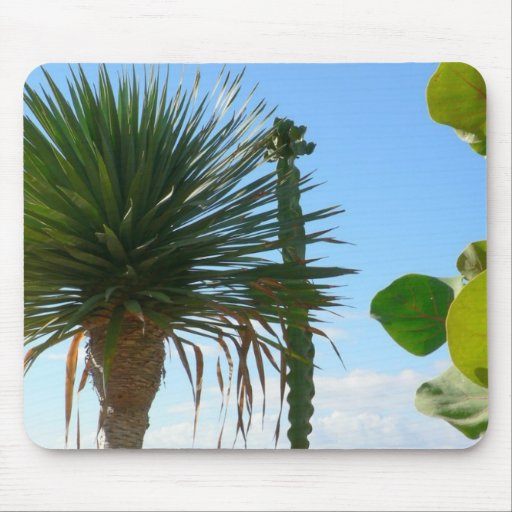 Palm And Cactus Mouse Pad
