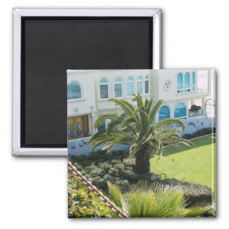 Palm  at Oceanside CA 2 Inch Square Magnet