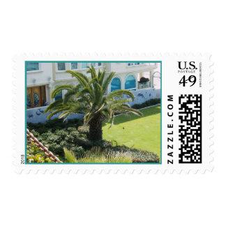 Palm at Oceanside CA Stamp