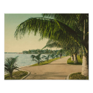 Palm Beach 1898 vintage Florida scene Posters