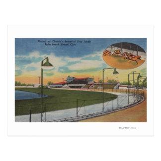 Palm Beach, FL - Kennel Club, Dog Racing Track Post Cards