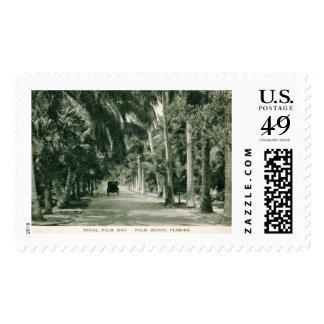 Palm Beach, Florida, Royal Palm Way Vintage Postage