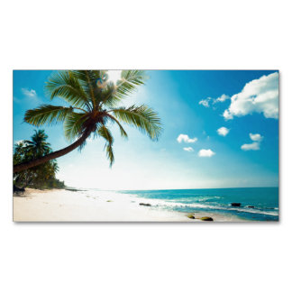 Palm Beach House Rental Travel Agent Spa Boutique Magnetic Business Card