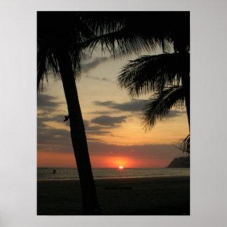 Palm Beach Impresiones