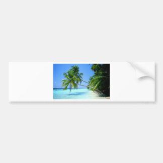 ¡Palm Beach tropical! Etiqueta De Parachoque