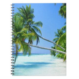 ¡Palm Beach tropical! Libreta