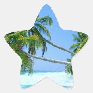 ¡Palm Beach tropical! Pegatina En Forma De Estrella