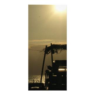 palm boat rack card