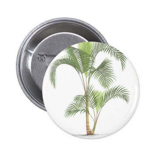 Palm collection - Drawing II 2 Inch Round Button
