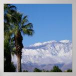 Palm Desert California Poster