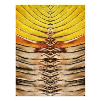 Palm Frond Leaf Macro Postcard