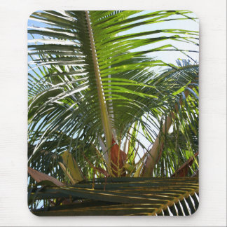 Palm Frond Mouse Pad