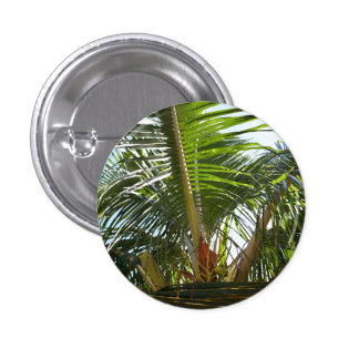 Palm Frond Pinback Button